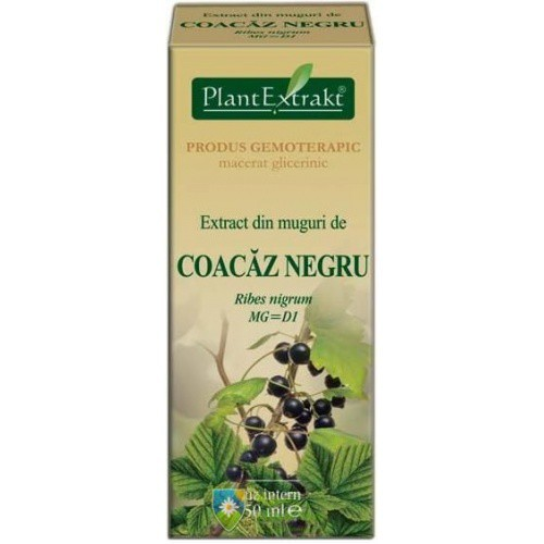 Extract din muguri de coacaz negru (Ribes nigrum) 50 ml Plant Extrakt