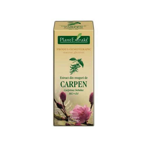 Extract din muguri de carpen (Carpinus betulus) 50 ml Plant Extrakt