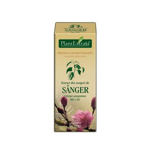 Extract din muguri de sanger (Cornus sanguinea) 50 ml Plant Extrakt