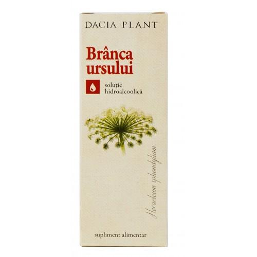 Branca Ursului Tinctura 50 ml DACIA PLANT