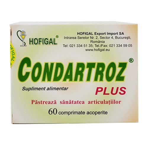 Condartroz Plus 60 cpr HOFIGAL