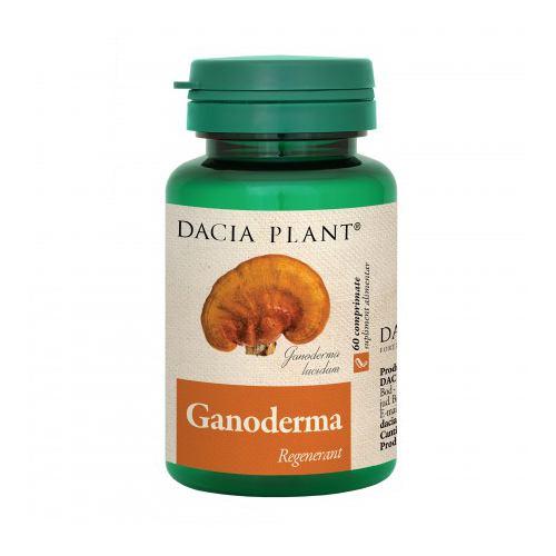 Ganoderma 60CPR Dacia Plant