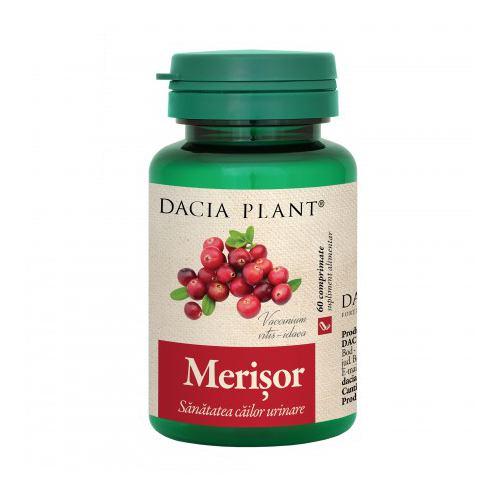 Merisor 60CPR DACIA PLANT